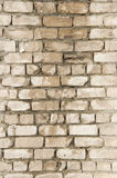 Wet brick wall. Stock Images