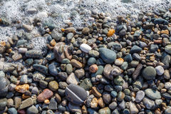 Wet bright shining colored pebble stones and sea foam Stock Photos
