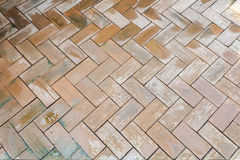 Wet brown brick floor pattern Stock Image