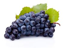 Wet bunch of blue grapes with leaves isolated on white background. Wet bunch of blue grapes with leaves isolated on a white background stock photo