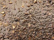 Free Wet Burnt Ash Of Grass Solidified By Rain Into Dark Mud. Water Hanged Ash Into Cover Royalty Free Stock Photo - 44006655