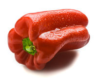Wet Capsicum Stock Photography