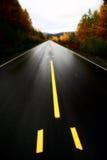 Wet Cassiar Highway Stock Photo