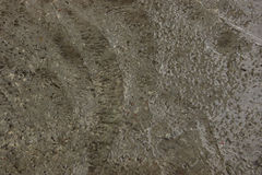 Wet cement texture for background. Wet concrete floor Royalty Free Stock Images