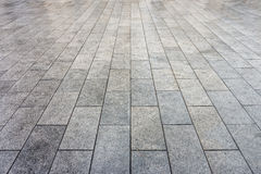 Wet ceramic tiles pavement Royalty Free Stock Photo