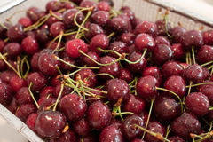 Wet cherries. A pile of fresh picked cherries sit in a colander in the sink draining after being rinsed off Royalty Free Stock Images