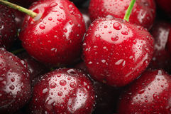 Wet cherries close-up Stock Image