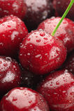 Wet cherries close-up Royalty Free Stock Images