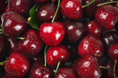 Wet cherries close-up Stock Photo