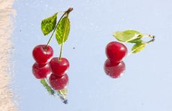 Wet cherry Stock Photography