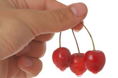Wet cherry on hand Royalty Free Stock Photo