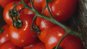 Cherry tomatoes rotating on a plate. Wet cherry tomatoes rotating on a plate stock video footage