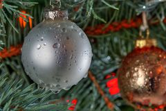 Wet Christmas. Christmas tree covered with drops of water suggesting rainy warm weather Royalty Free Stock Images