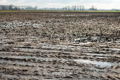 Wet clay field with puddles of water due to rain Royalty Free Stock Photography