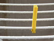Wet dryer with one bright clothes peg. royalty free stock photo