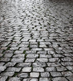 Wet cobbles of block pavement Royalty Free Stock Photography