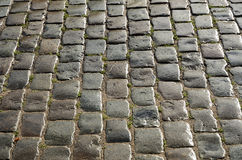 Wet cobbles of block pavement Stock Images