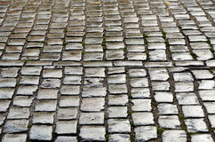 Wet cobbles of block pavement Royalty Free Stock Photos