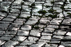 Wet cobbles in the sun Royalty Free Stock Photos