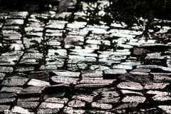 Wet cobbles in the sun Stock Photo