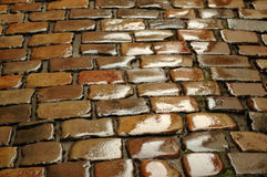 Wet cobblestone. Background. Royalty Free Stock Image