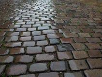 Wet cobblestone pavement Royalty Free Stock Image