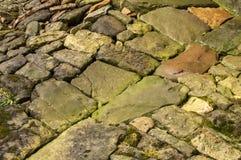 Wet cobblestone pavement Royalty Free Stock Photography