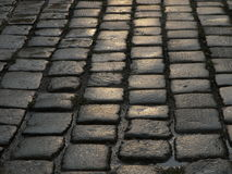 Wet cobblestone street closeup. Wet cobblestone pattern Stock Photos