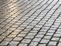 Wet cobblestones Royalty Free Stock Photography