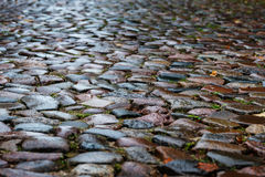 Wet cobblestones in a medieval street, background texture Stock Photography