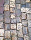 Wet cobblestones Stock Images