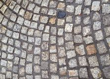 Wet cobblestones Royalty Free Stock Photos