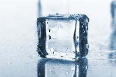 Wet and cold ice cubes Royalty Free Stock Images