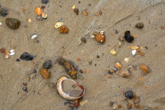 Wet colorful stones and shell on sand. Beach Royalty Free Stock Image