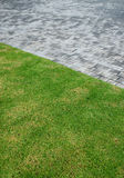 Wet concrete paving and green lawn Royalty Free Stock Photo