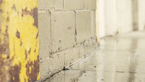Wet concrete wall. stock video footage
