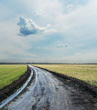 Wet country road to cloudy horizon Royalty Free Stock Images