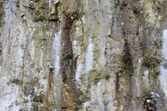 Wet crag wall Stock Image