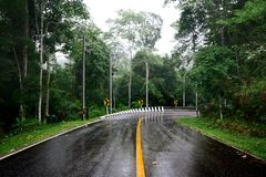 Wet curve road Stock Photography