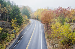 Wet  curved road in Acadia National Park. Wet slippery road during fall in Acadia National park on Bar Harbor, Maine Stock Photography
