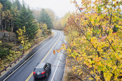 Wet  curved road in Acadia National Park Royalty Free Stock Photo