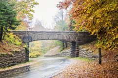 Wet  curved roads in Acadia National Park Stock Images