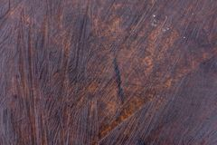 Wet dark brown tree trunk texture or background. Closeup view dark brown tree trunk texture or background Royalty Free Stock Photography