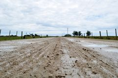 Wet Dirt Road. Valizas rocha uruguay travel destinations scenic south america latin cow field nobody royalty free stock image