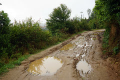 Wet dirt road Stock Photography