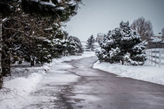 Wet driveway in the country surrounded by snow Royalty Free Stock Image