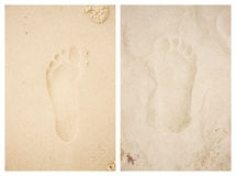 Wet / Dry Beach Footprints. Wet And Dry Sandy Beach Footprints Stock Images