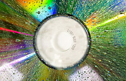 A wet dvd disc. With water drops Royalty Free Stock Images