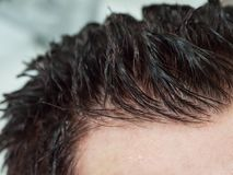 Wet dyed hair on the mans head. Close up. Wet dyed hair on the mans head. Close up stock images