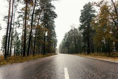 Wet empty asphalt road through forest in foggy rainy autumn day, highway in rural landscape Stock Images